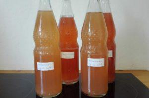 Apfelsaft mit dem Dampfentsafter