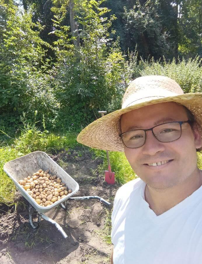 kartoffelfeld nach der ernte